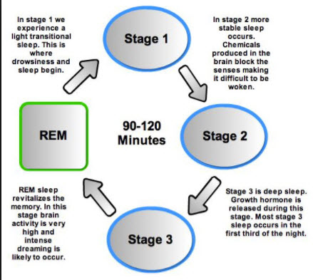 Rem 3 Sleep Stages